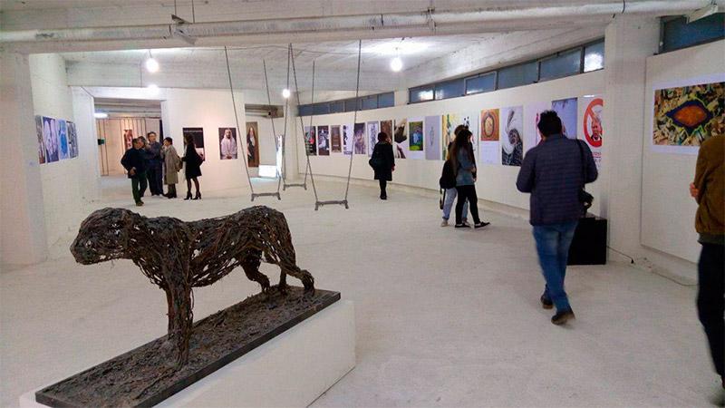 installation_casoria_art_museum